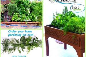 Green Spaces - Schaduf