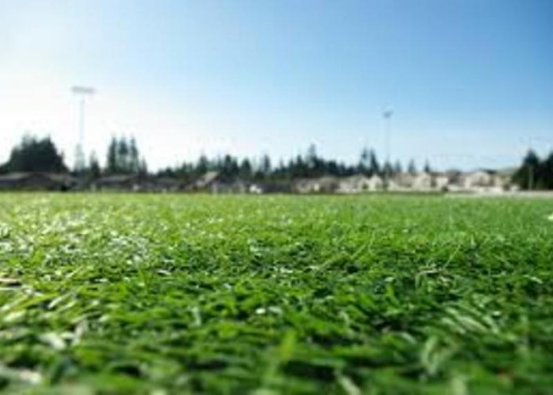 Turf and Ornamental Grass Protection Market