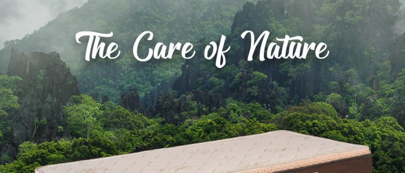 buy natural latex mattress